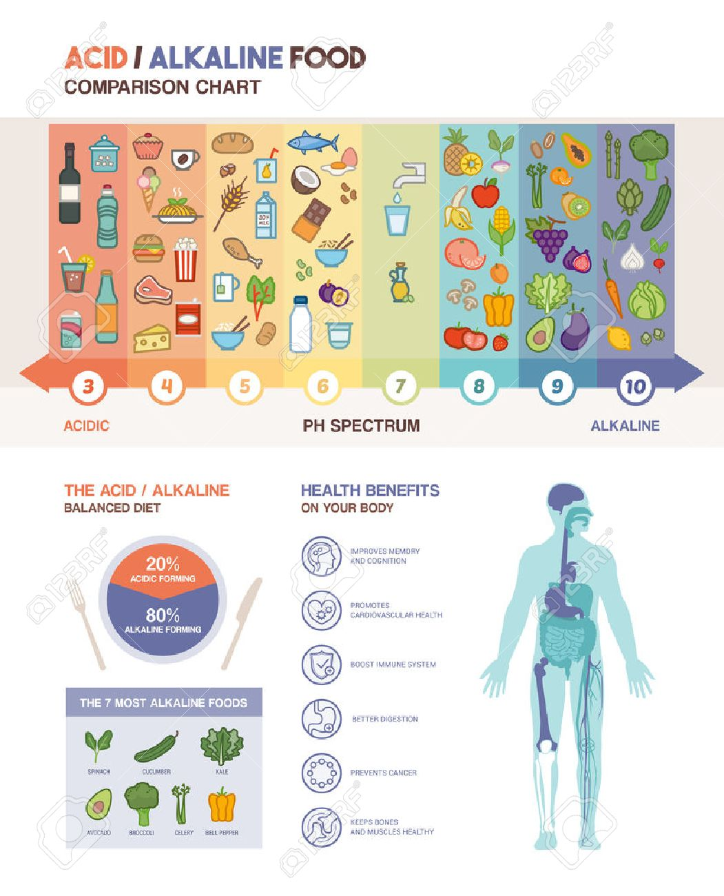 The Acidic Alkaline Diet Food Chart Infographics With Food Icons