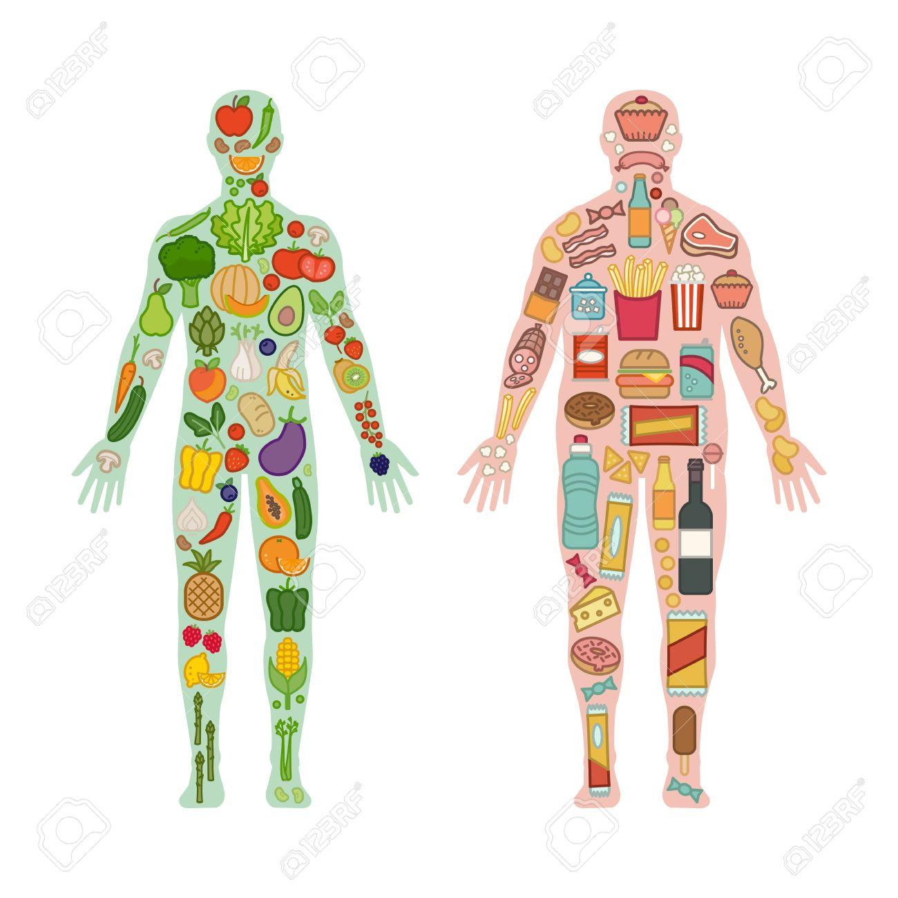 Frisches Gemüse Und Obst In Einem Gesunden Körper Fit Und Junk ...