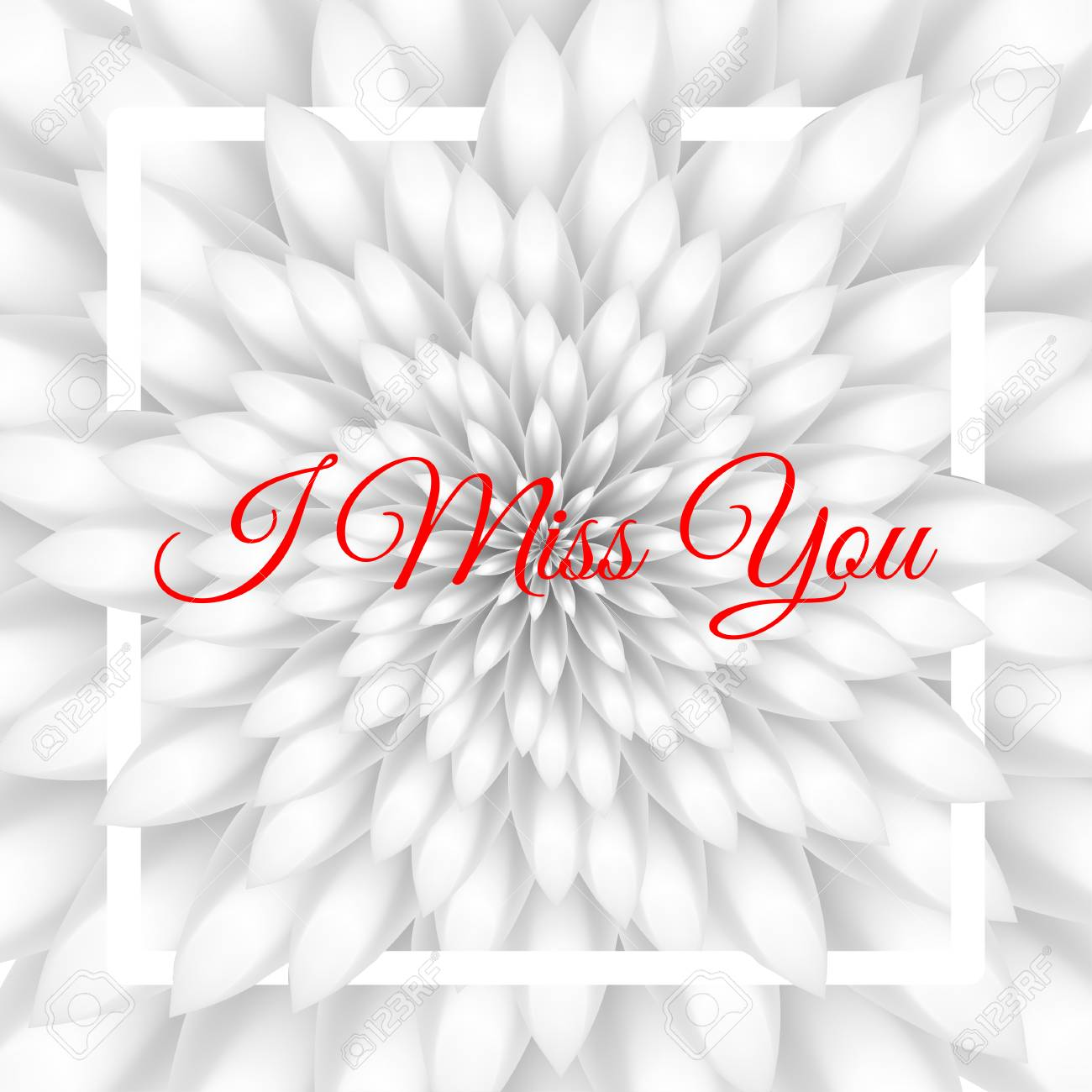I Miss You Card Greeting Card With White Chrysanthemum In The