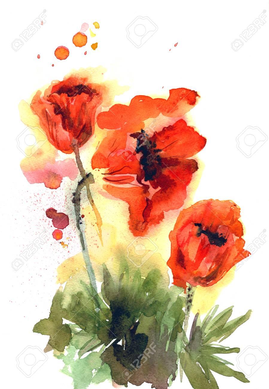 Les coquelicots Fleurs d/'été Carte de vœux anniversaire//Blank Notelet-Jardin Nature