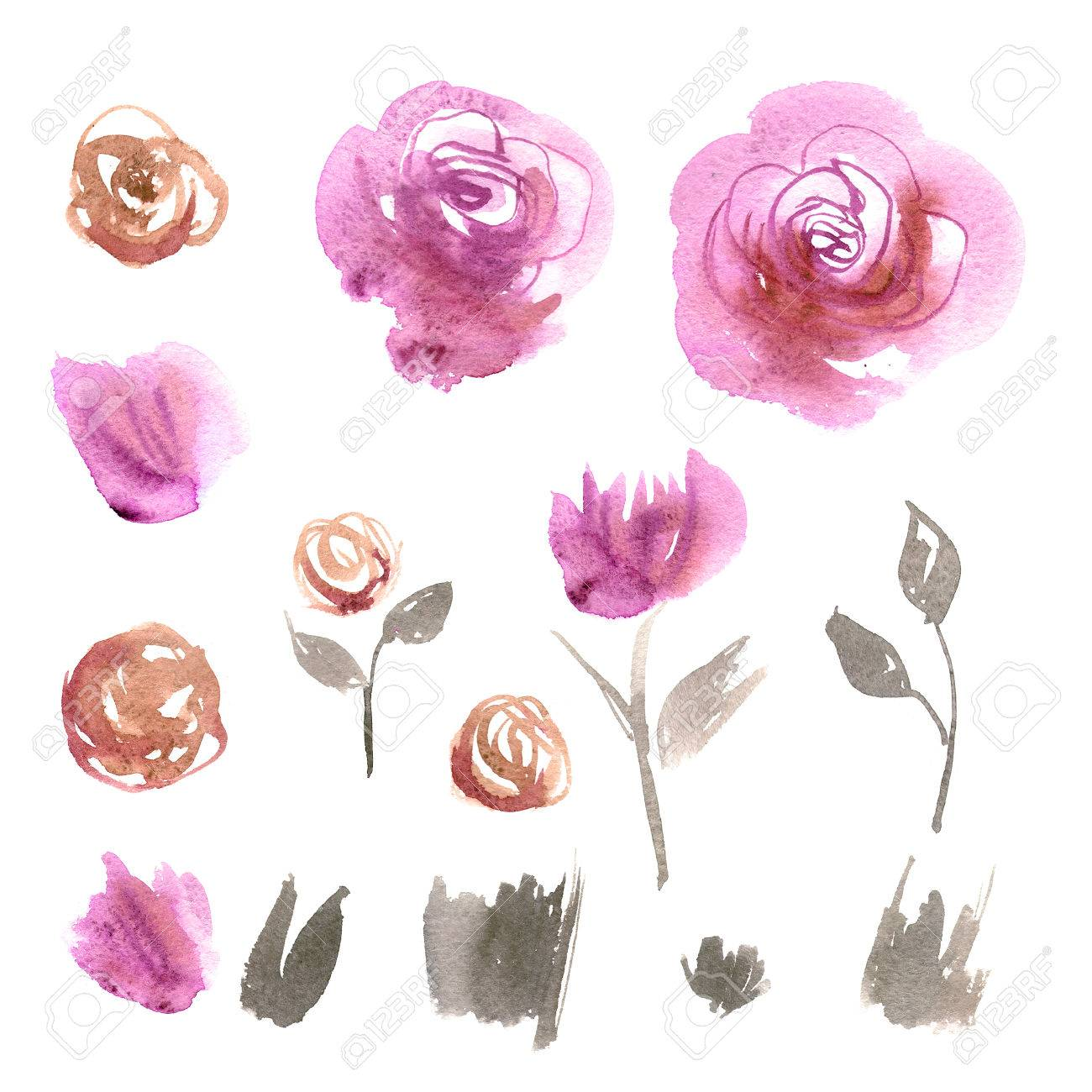 Lindas Flores De Acuarela. Rosas Rosadas. Elementos Para La ...