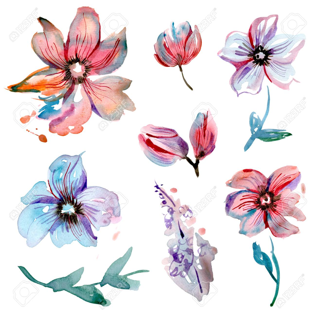 Cute Watercolor Hand Painted Flower Elements For Invitation Wedding