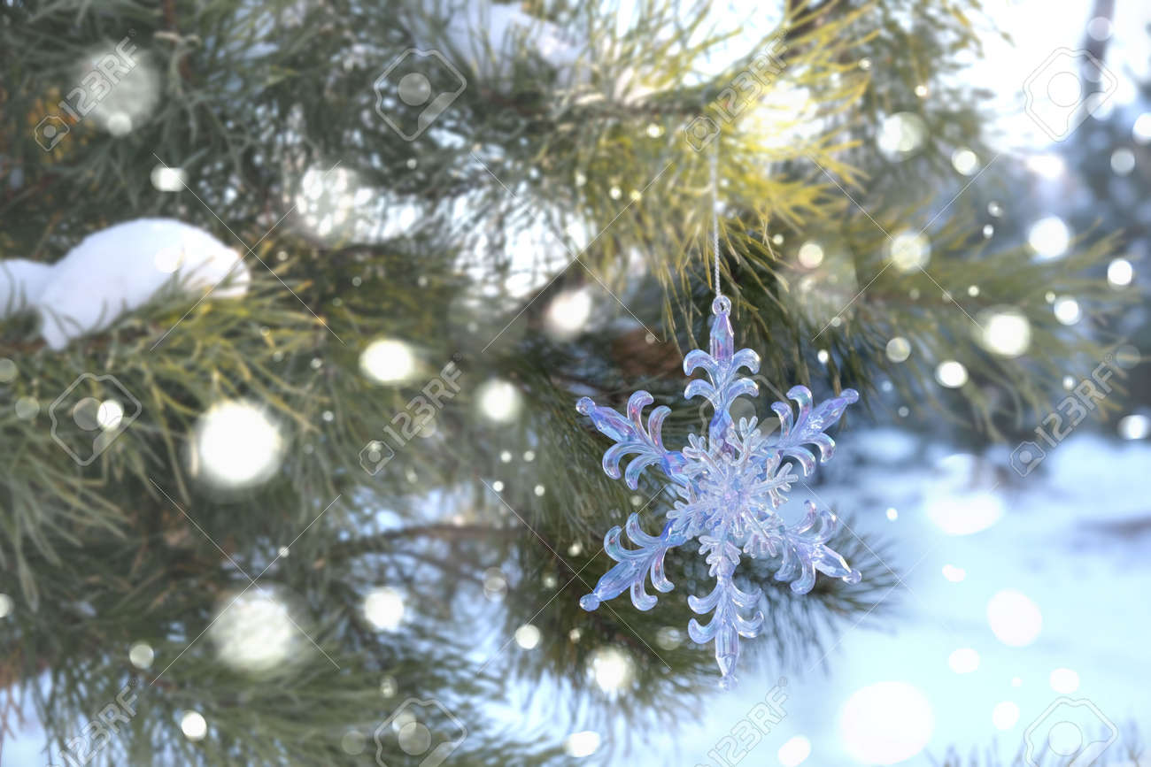 Snowflake Christmas toy, Spruce, fir green branch in winter park covered with snow. New Year holiday atmosphere, spirit. Glare and bokeh, evening twilight - 167238713