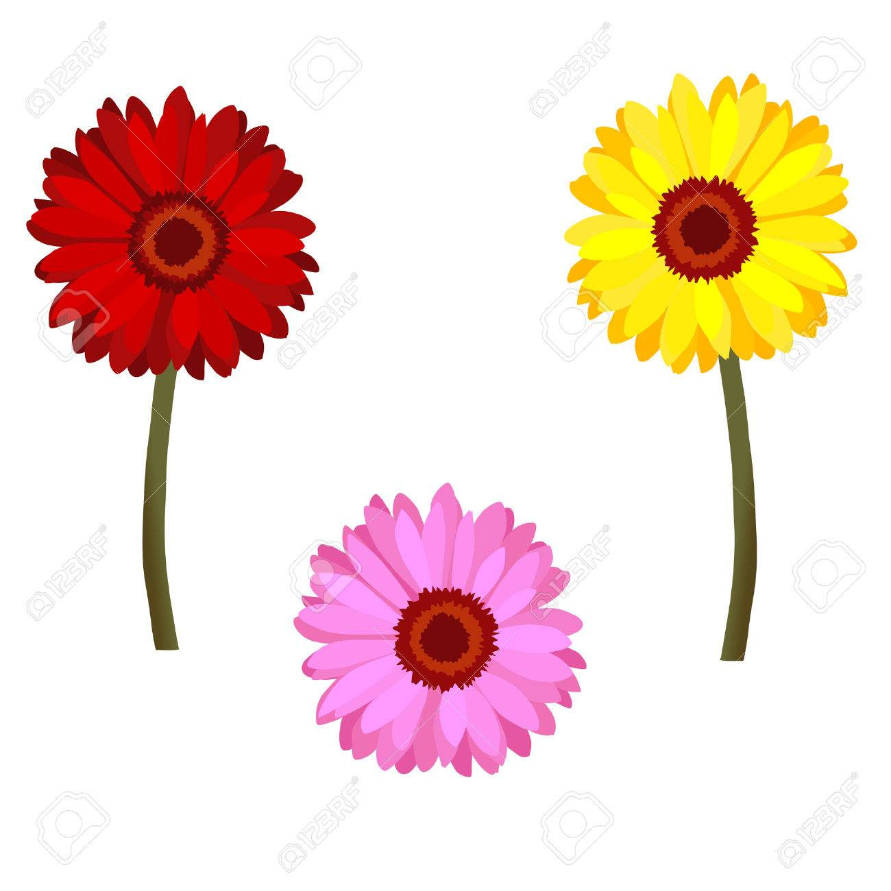 set of daisy flowers royalty free cliparts vectors and stock