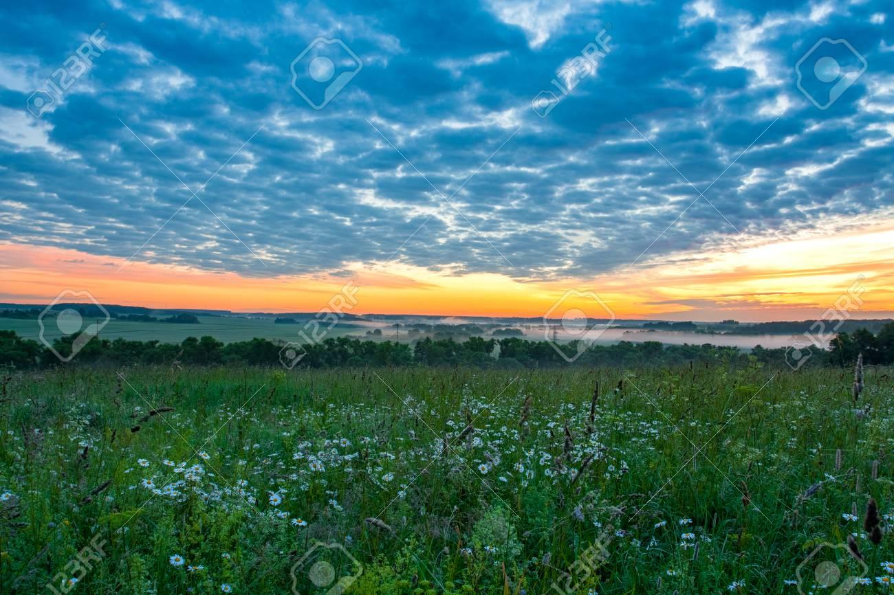 Beautiful landscape in early summer dawn flower meadow under beautiful landscape in early summer dawn flower meadow under scenic dramatic orange blue sky izmirmasajfo