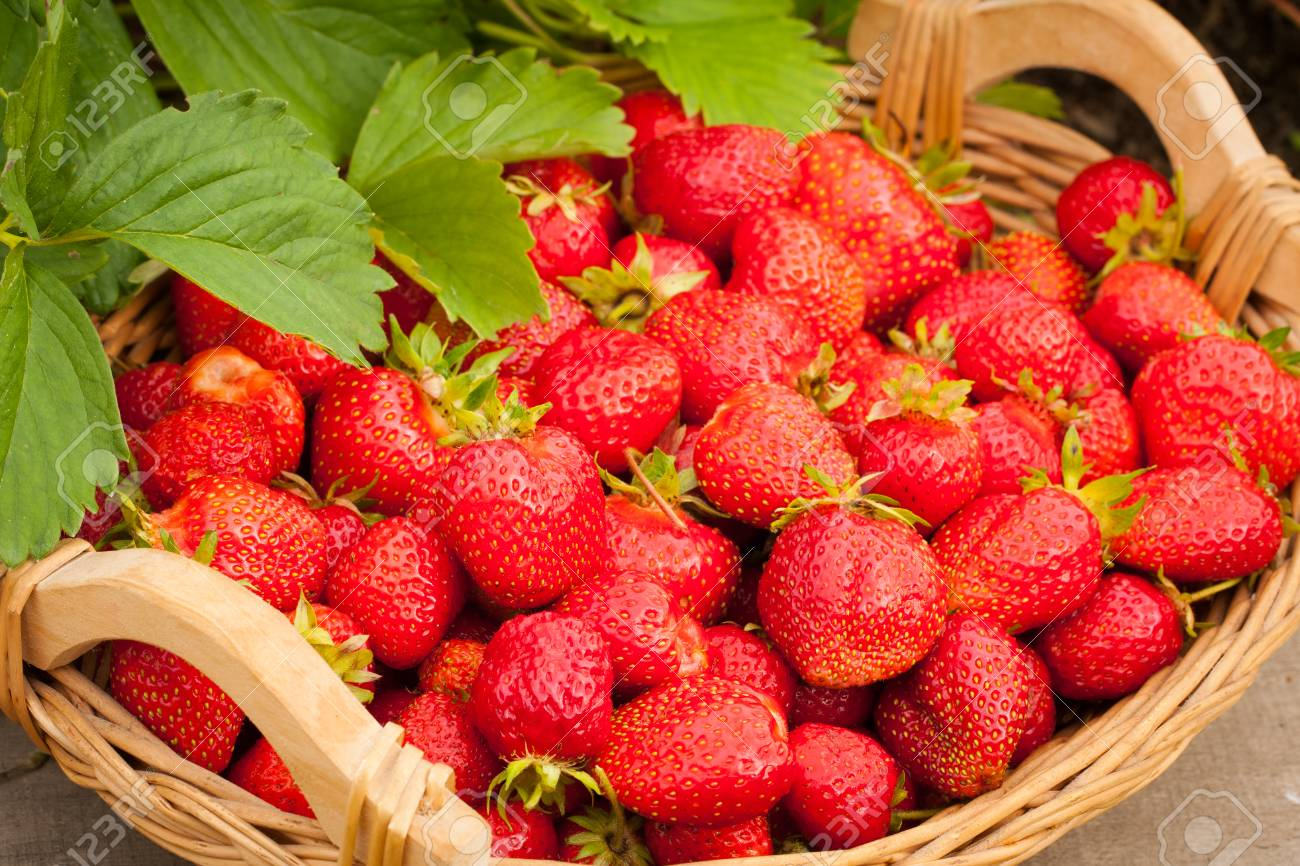 What is useful strawberries 6