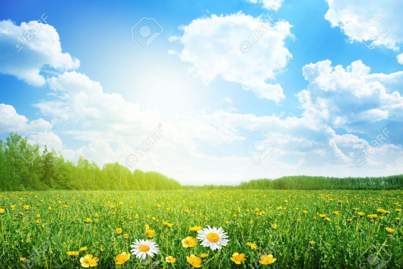 Dia Soleado