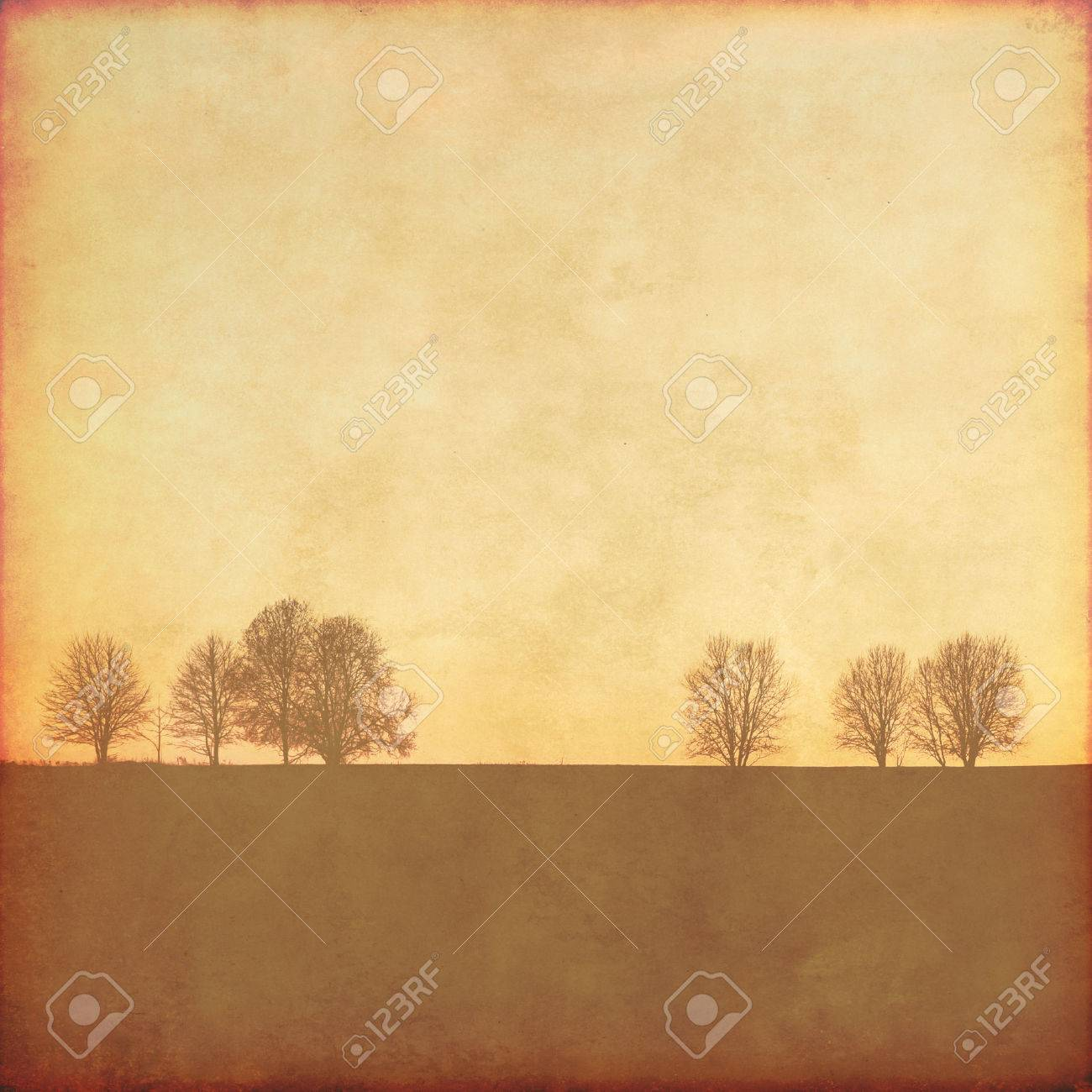 Grunge background with trees. Stock Photo - 49605434