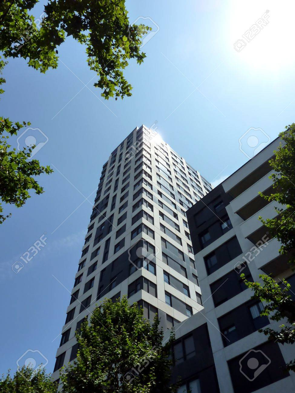 Black and white skyscraper surrounded by trees by beautiful sunny weather Stock Photo - 7593102