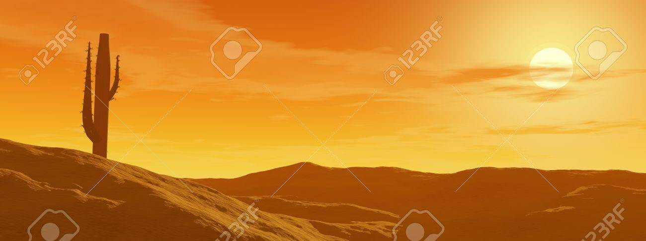 Cactus in the desert by cloudy sunset Stock Photo - 11067673