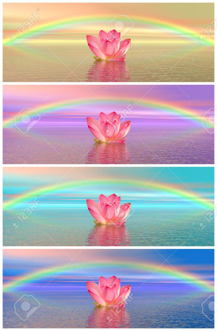 Set of different colors of pink lily flowers on water and under set of different colors of pink lily flowers on water and under rainbow izmirmasajfo Image collections