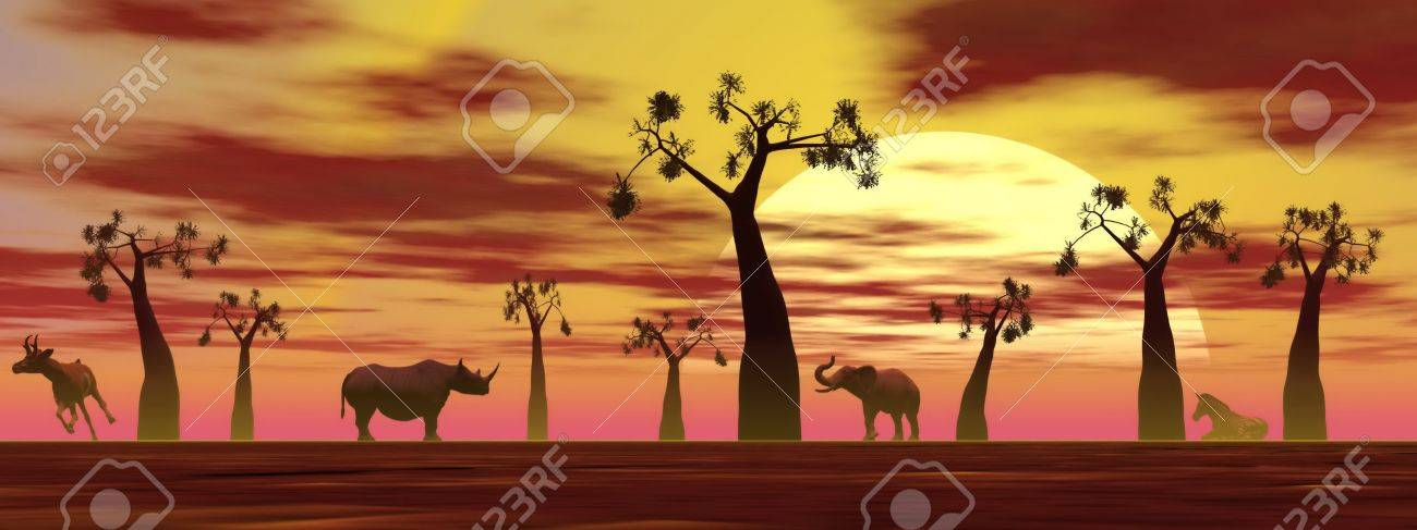 Shadows of animals in the savannah next to baobabs by sunset Stock Photo - 15062081