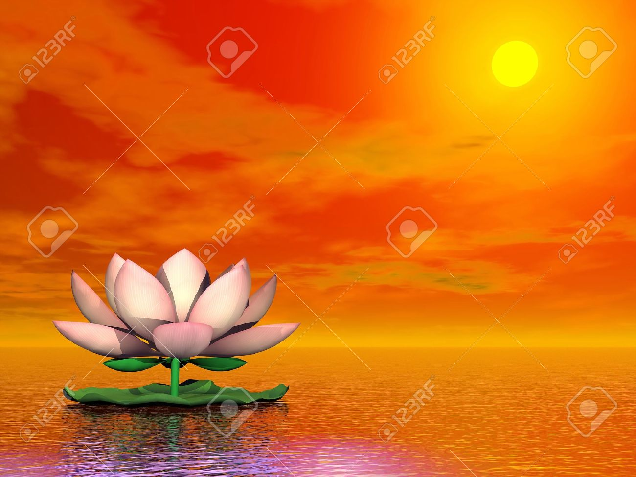 Beautiful pink lotus flower on the water by red sunset stock photo beautiful pink lotus flower on the water by red sunset stock photo 19756202 izmirmasajfo