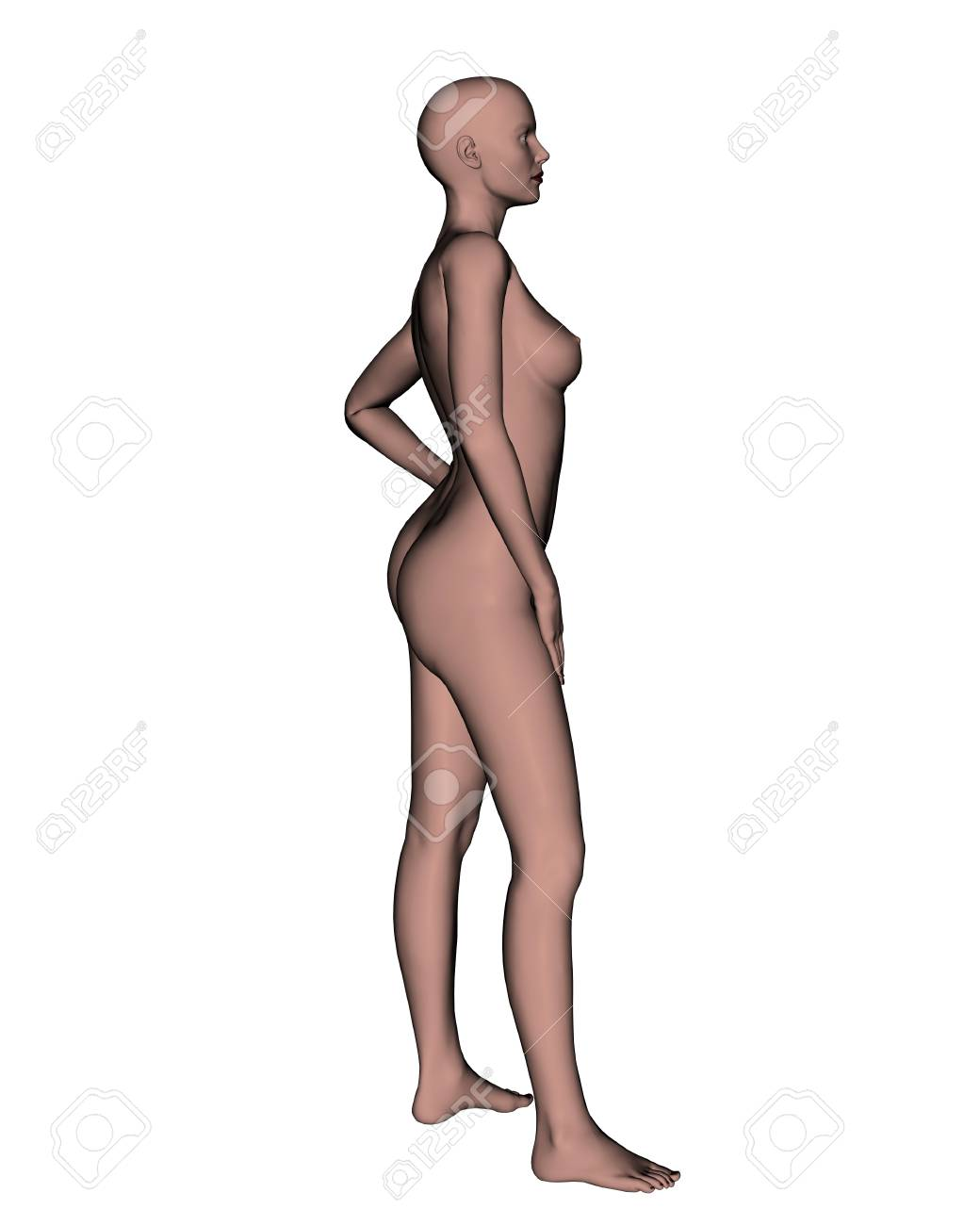 Side of a nude female in white background Stock Photo - 20847388