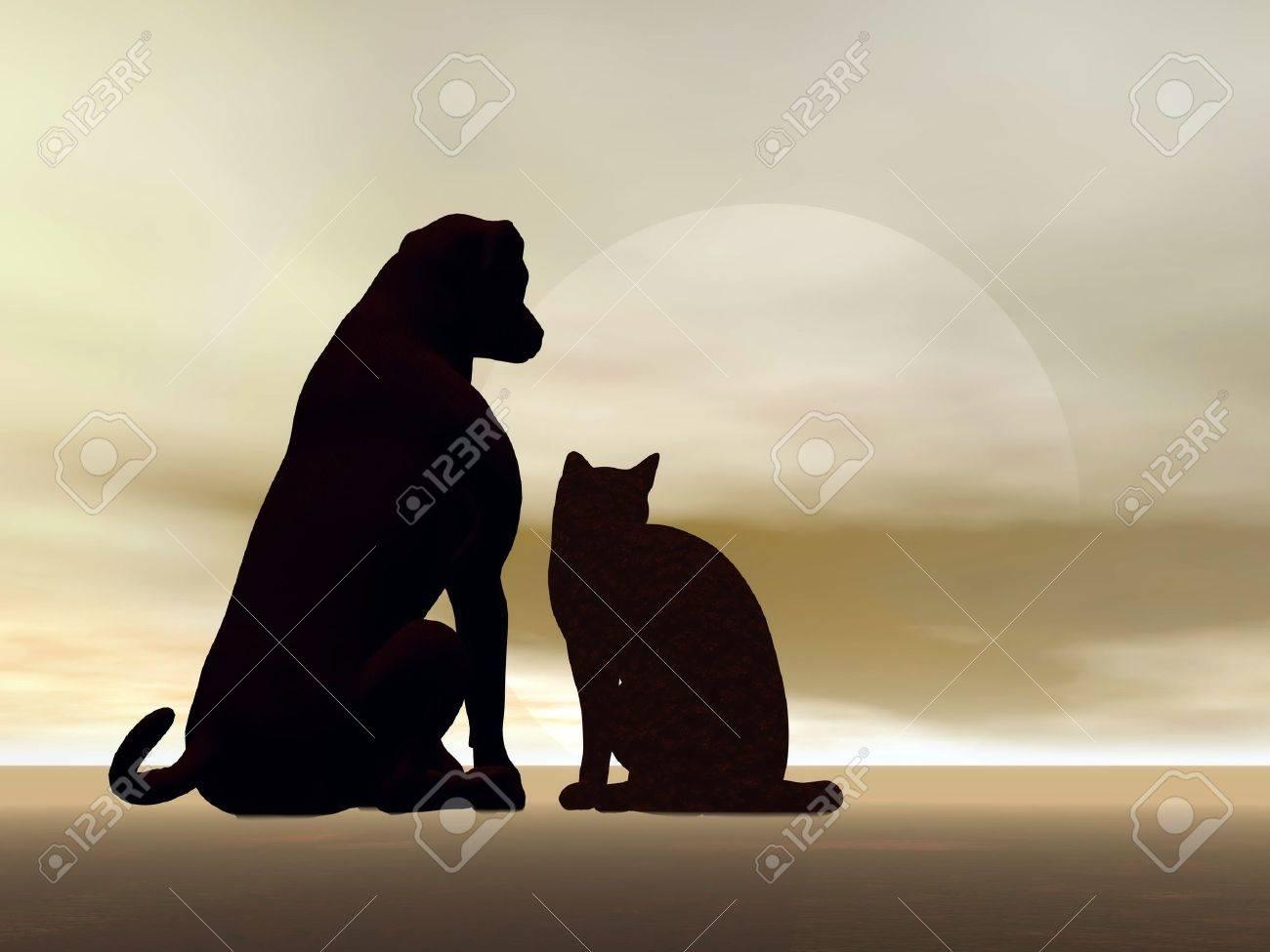 siluetas de perros y gatos que se sientan pacíficamente delante de la luna Foto de archivo - 21404797