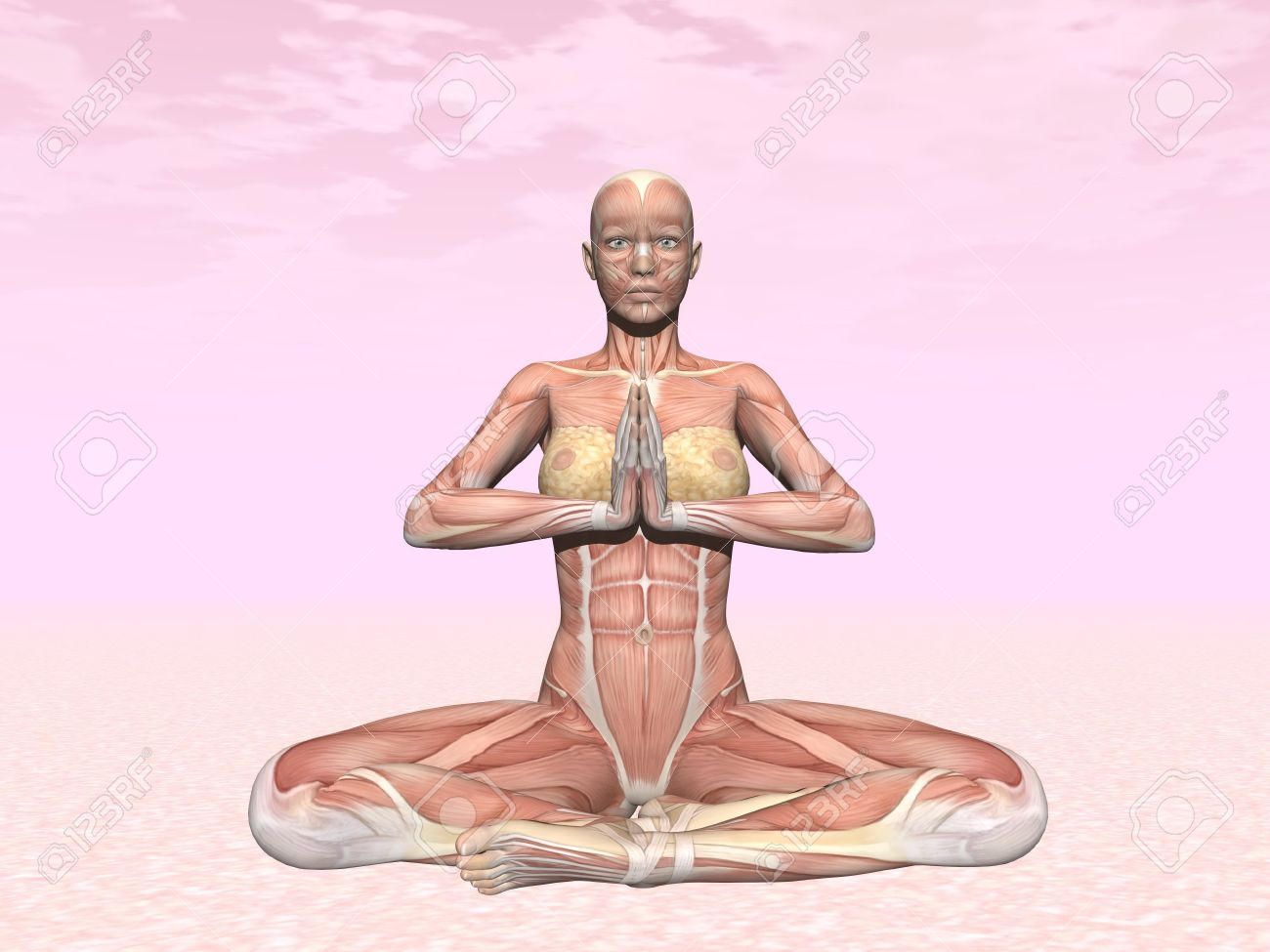 Meditation yoga pose for woman with muscle visible in pink background Stock Photo - 26355864