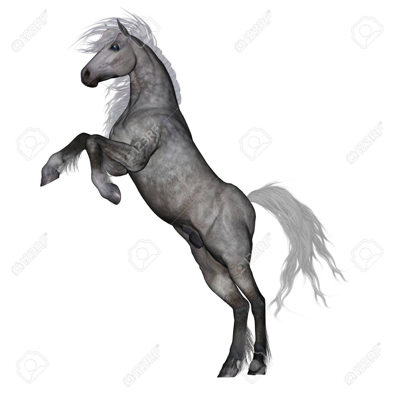 photo cheval 3d