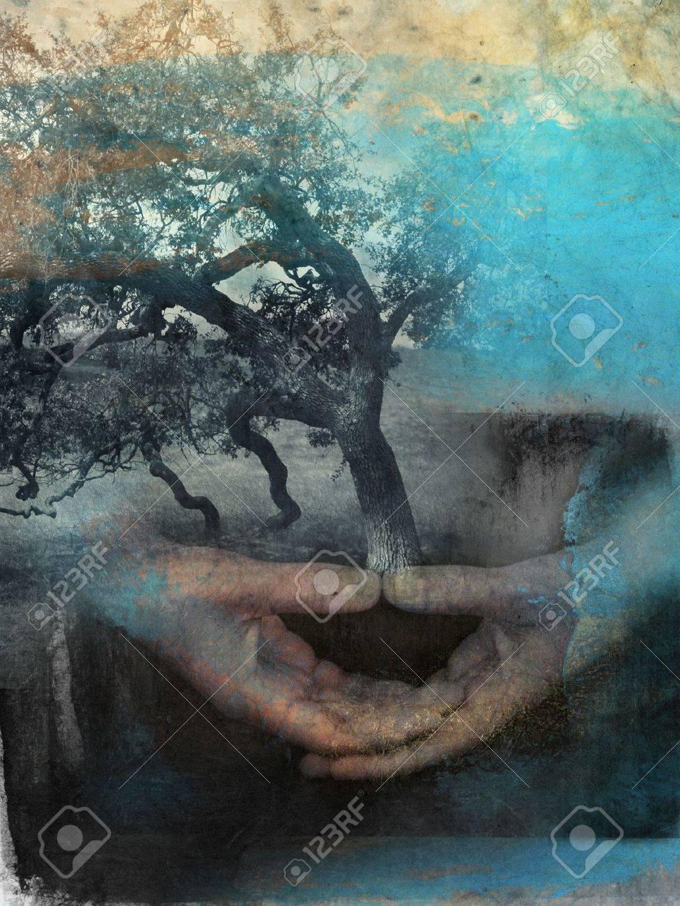 Mixed medium photo based illustration of hands in meditation with tree. Stock Photo - 326559