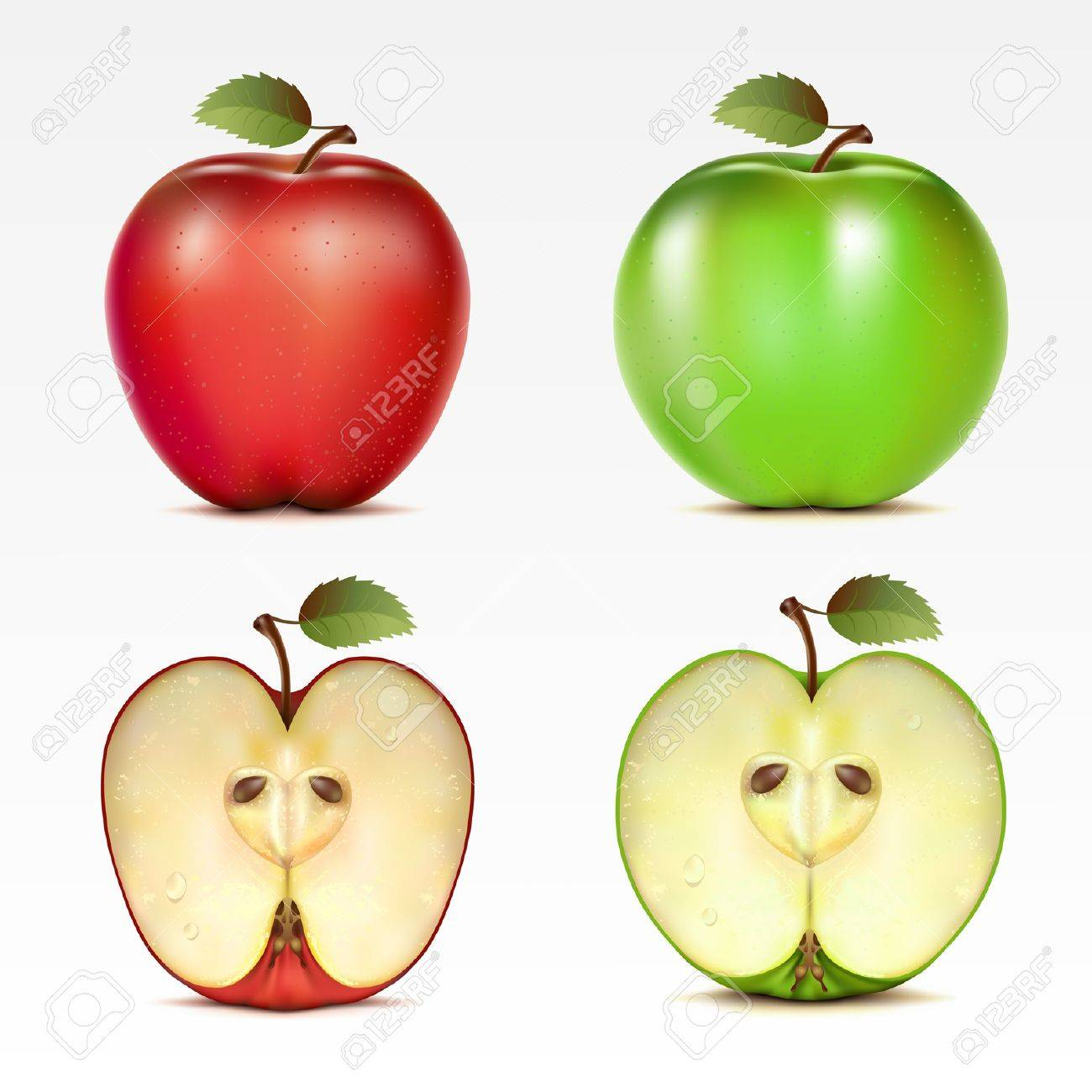 Set of red and green apples and their halves - 9567691
