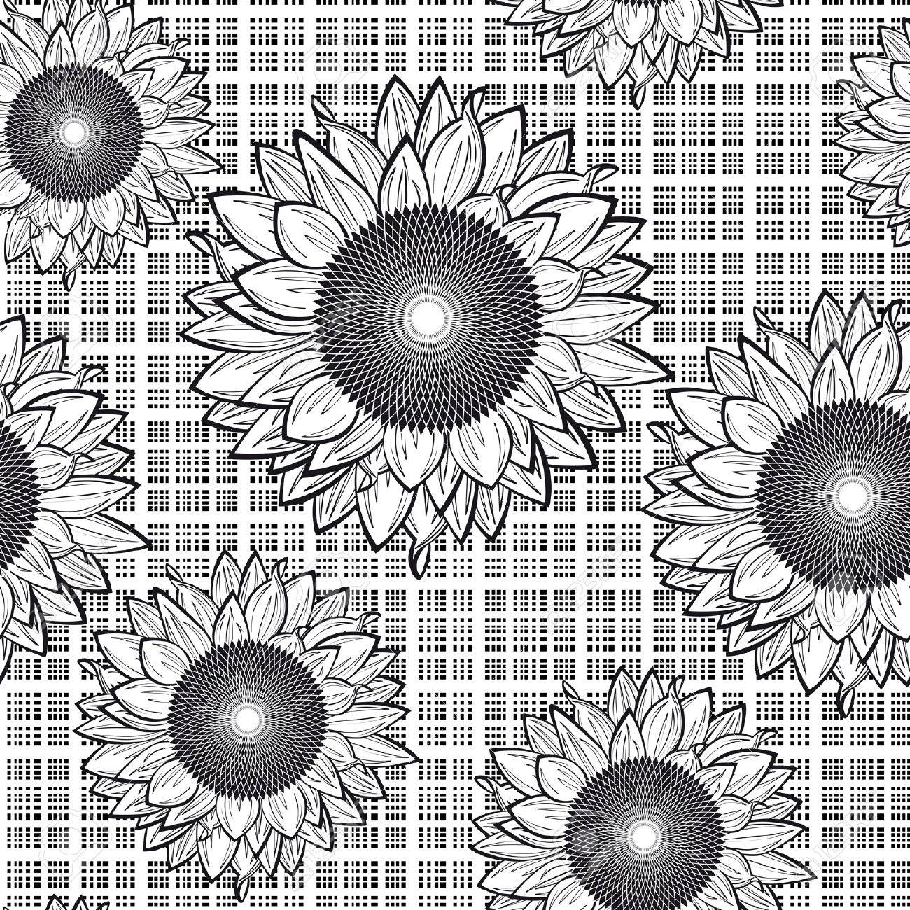 Seamless from sunflowers.Black and white Stock Vector - 9692046