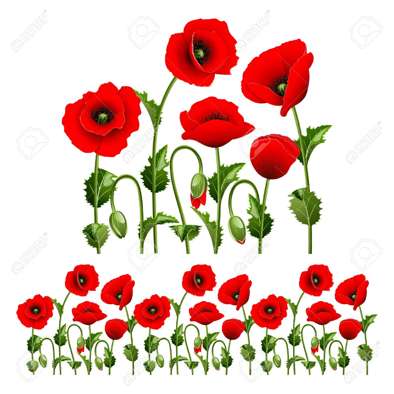 Border from red poppies can be repeated and scaled in any size - 12832758