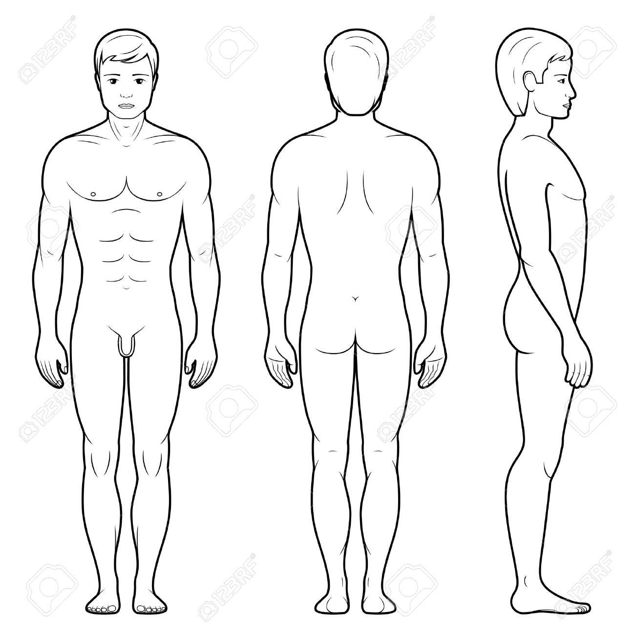 vector illustration of male figure front back and side view