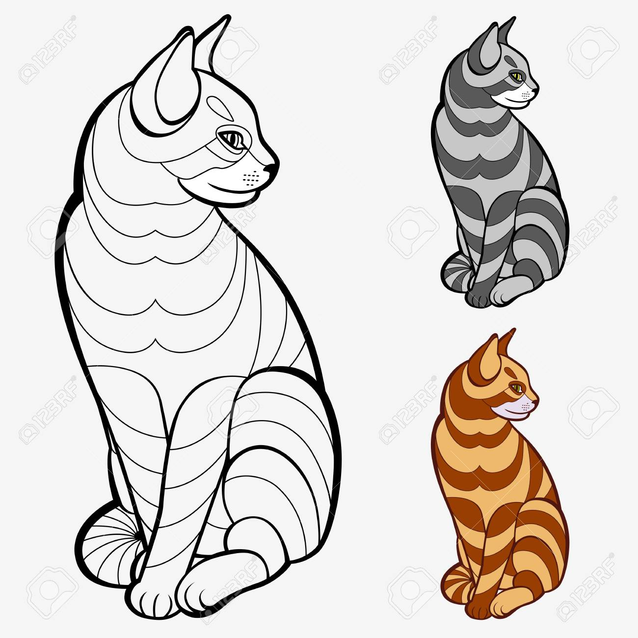 Coloring Book Pages For Kids And Adults Striped Cat