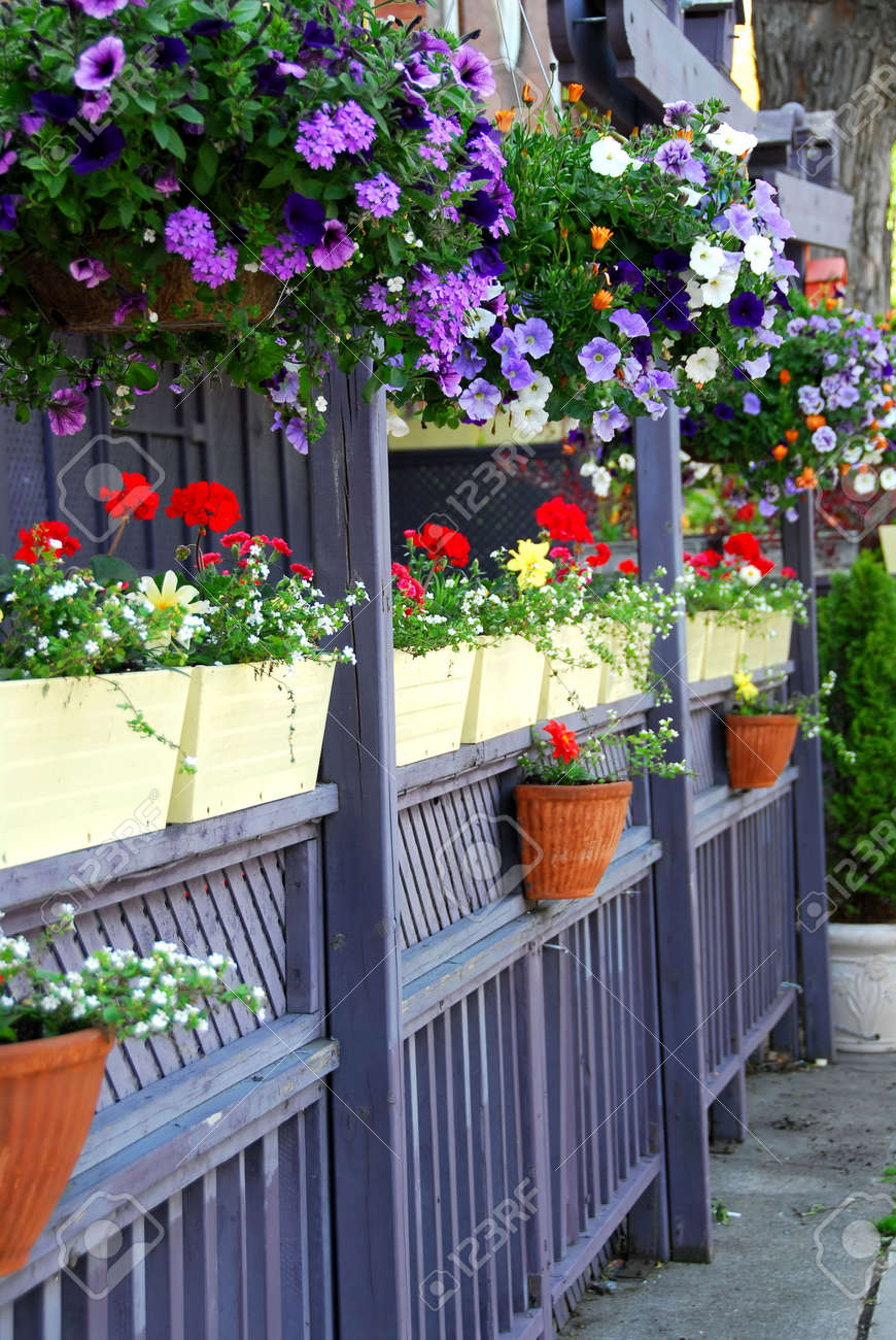 Restaurant patio fence  Restaurant Patio Fence With Colorful Flowers Stock Photo, Picture ...