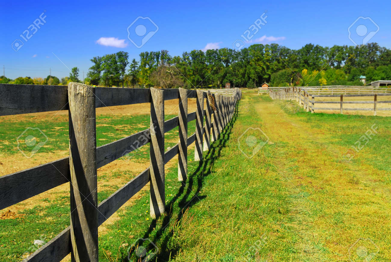 Wooden Farm Fence wooden farm fence and road in rural ontario, canada. stock photo