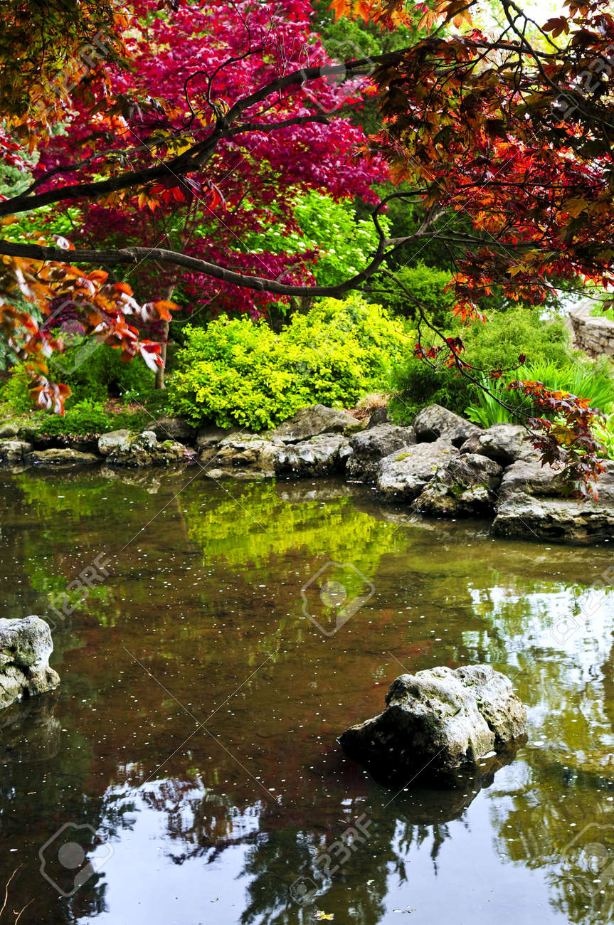 Japanese zen gardens with pond - Pond With Natural Stones In Japanese Zen Garden Stock Photo 3143668