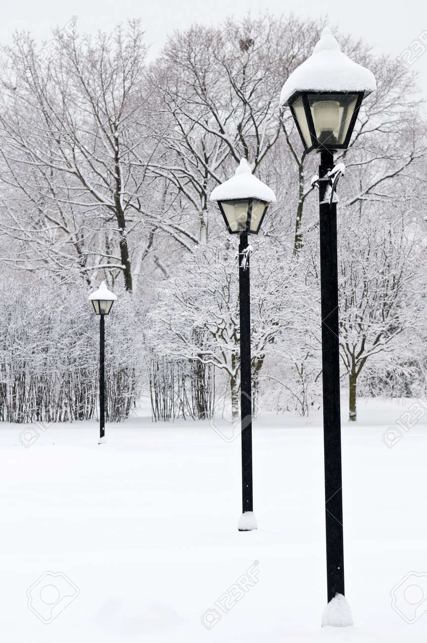 Winter park covered with fresh white snow Stock Photo - 3544296