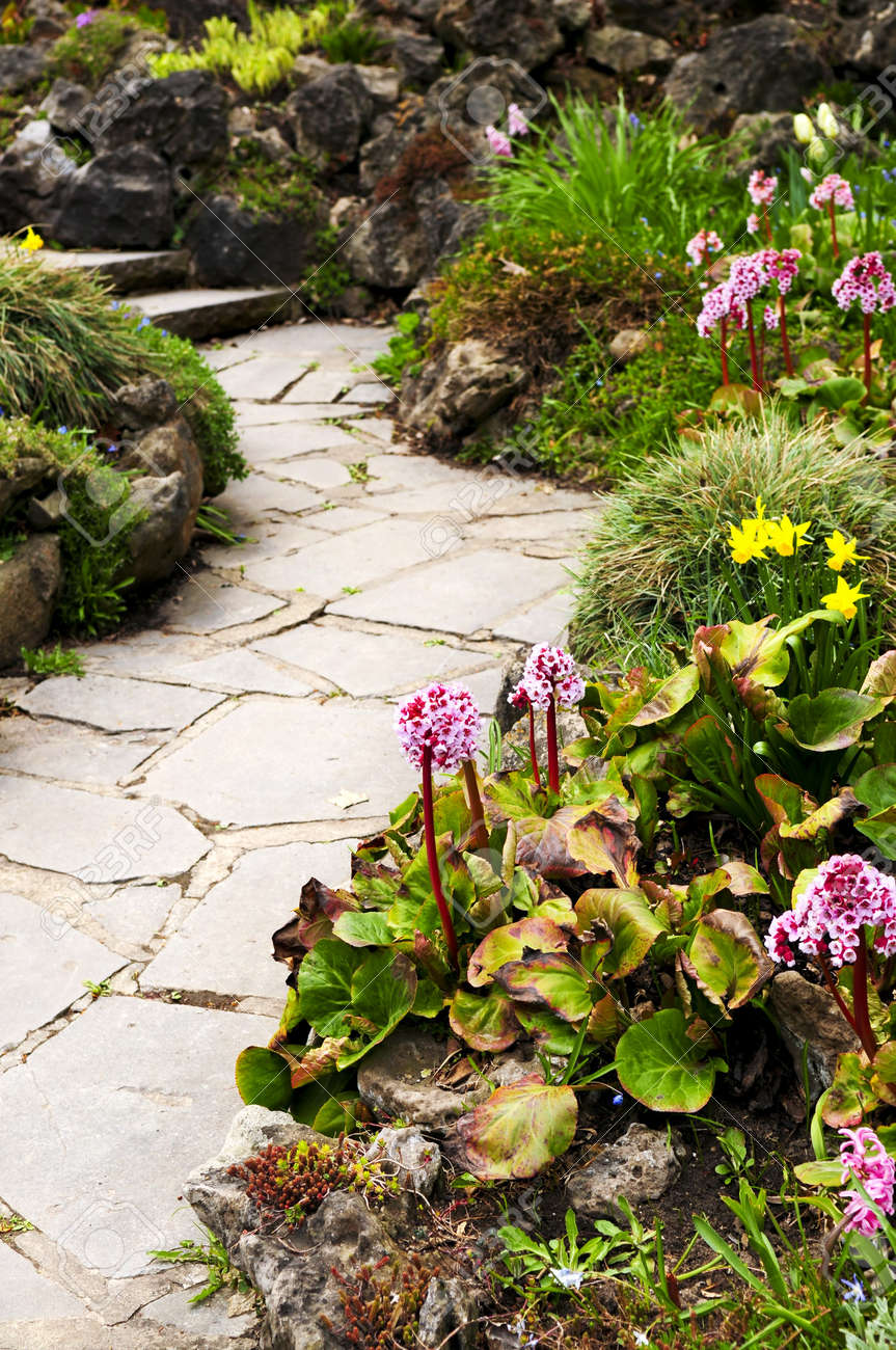 Spring Garden With Emerging Perennial Flowers And Plants Stock Photo