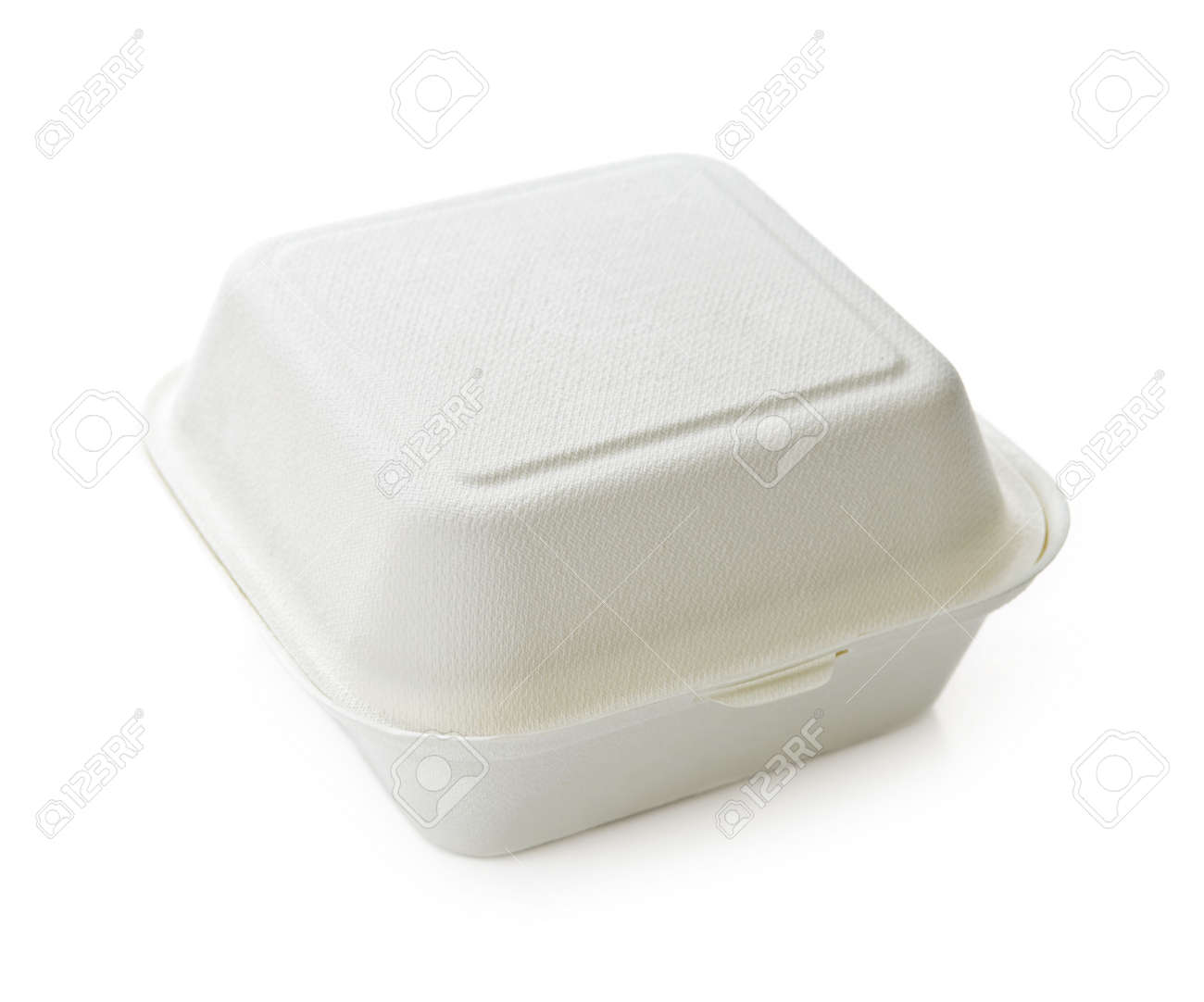 Isolated image of disposable take out container Stock Photo - 5526040