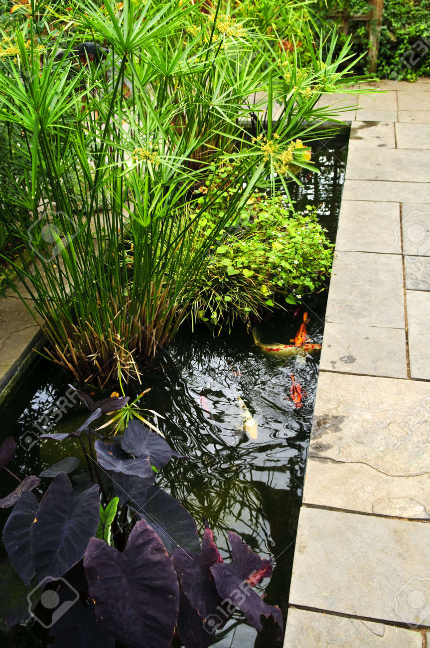 Lush green garden with stone landscaping and koi pond Stock Photo - 6020762