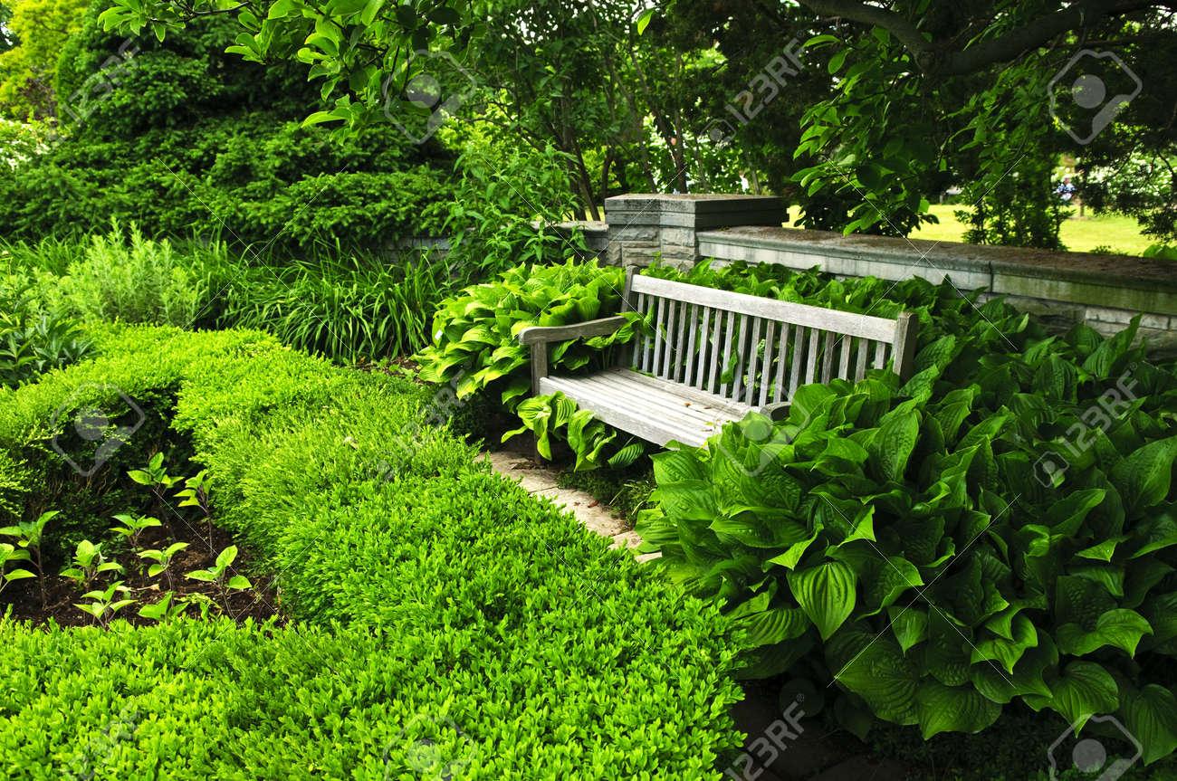 Jardin vert luxuriant avec Pierre aménagement paysager, couverture et banc