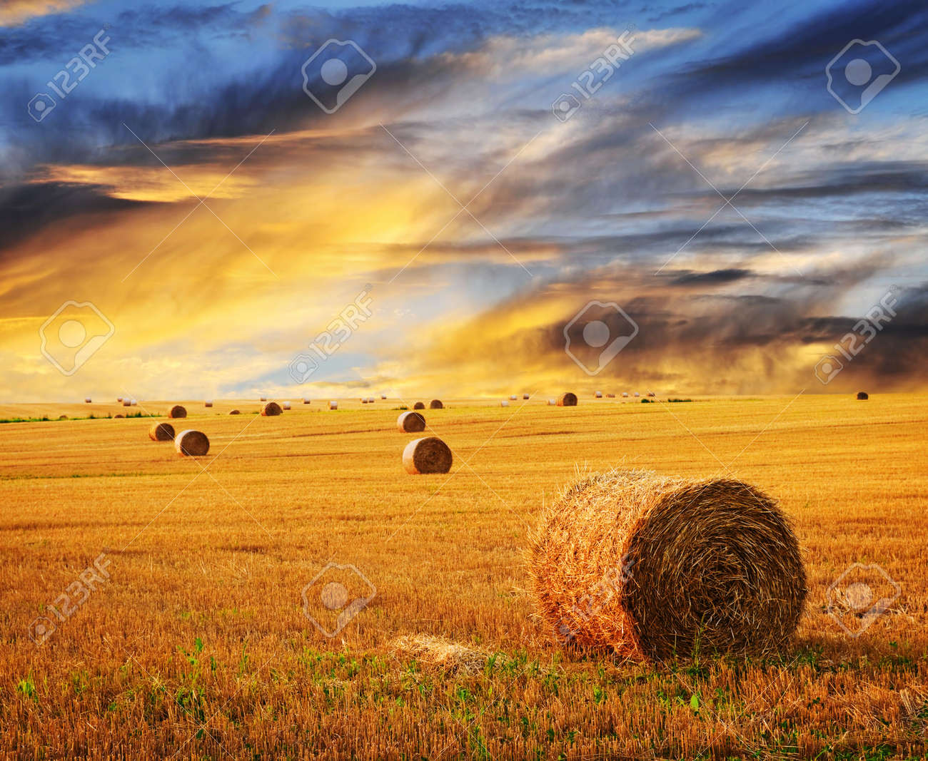 Golden sunset over farm field with hay bales Stock Photo - 6278629