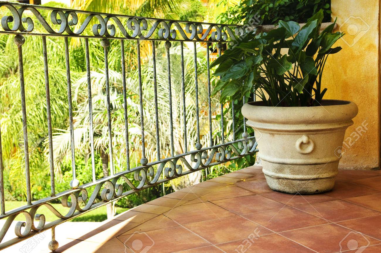 Pot Plants For Balcony Railings – Best Balcony Design Ideas Latest