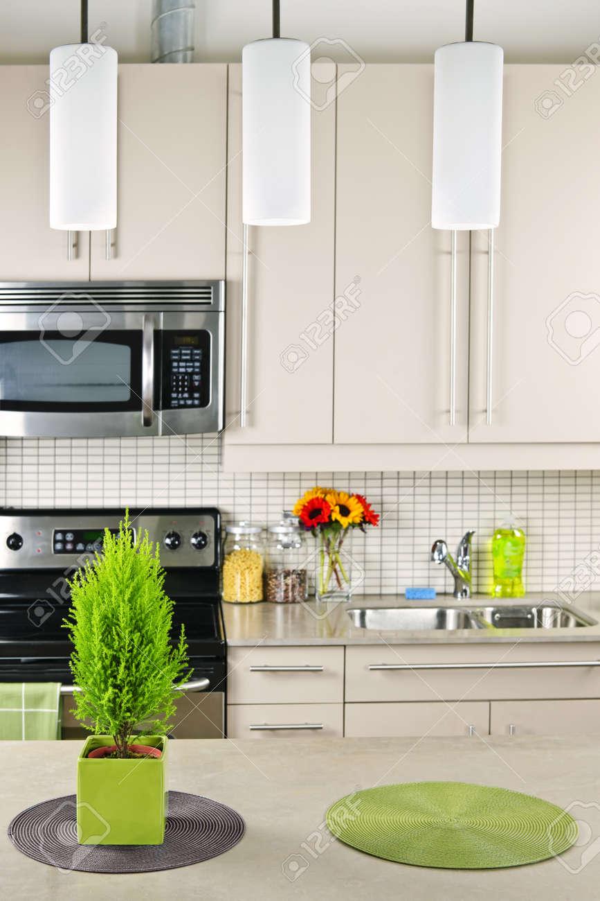 Modern kitchen interior with natural stone countertop Stock Photo - 8089536