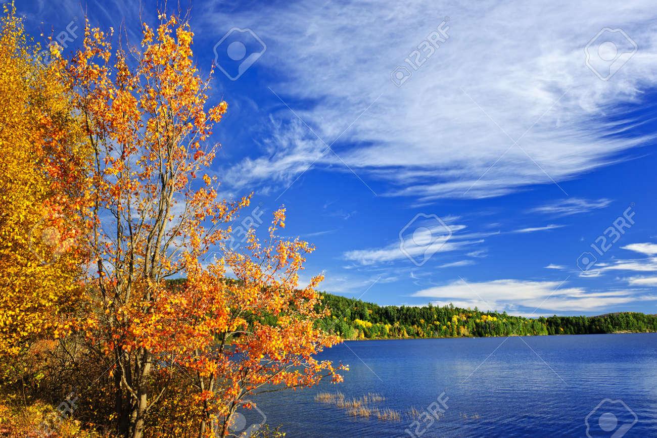 See Und Wald Herbst Mit Bunten Baumen Im Algonquin Park Kanada