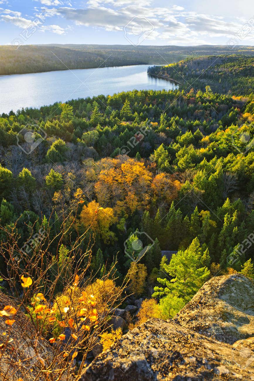 See Und Wald Herbst Mit Bunten Baumen Von Oben In Algonquin Park