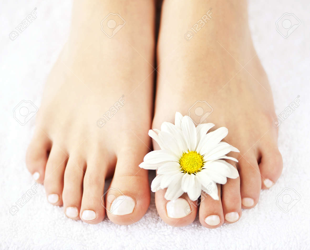soft female feet with pedicure and flowers close up stock photo