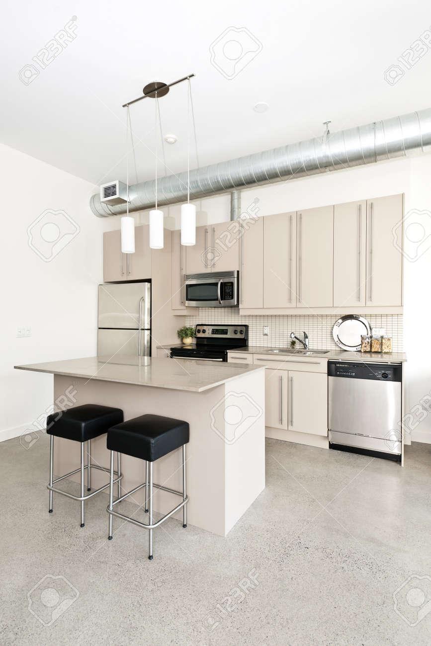 Cocina En El Apartamento Tipo Loft Moderno Con Isla Y ...