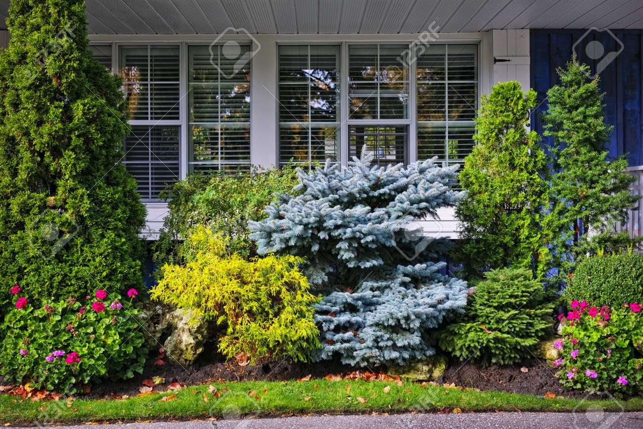 Beau Jardin Avec Des Arbres Et Des Fleurs Devant Les Fenetres A La