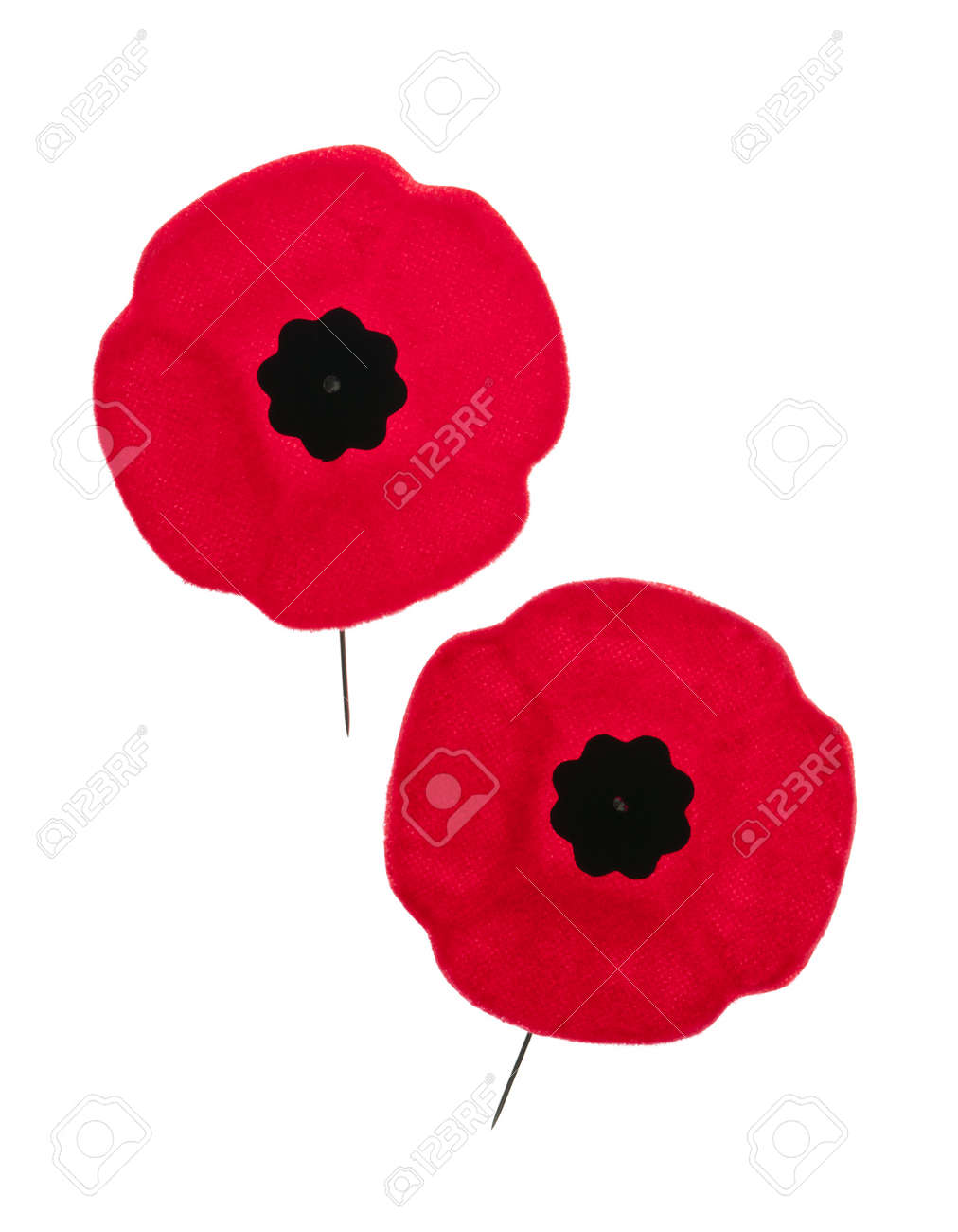 Two red poppy lapel pins for Remembrance Day Stock Photo - 16784815