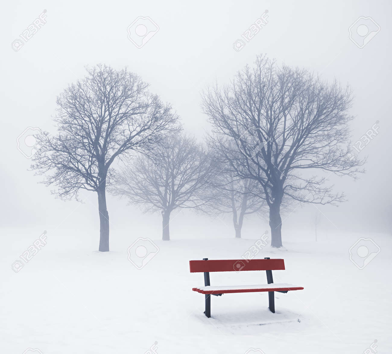Foggy winter scene with leafless trees and red park bench Stock Photo - 17664237