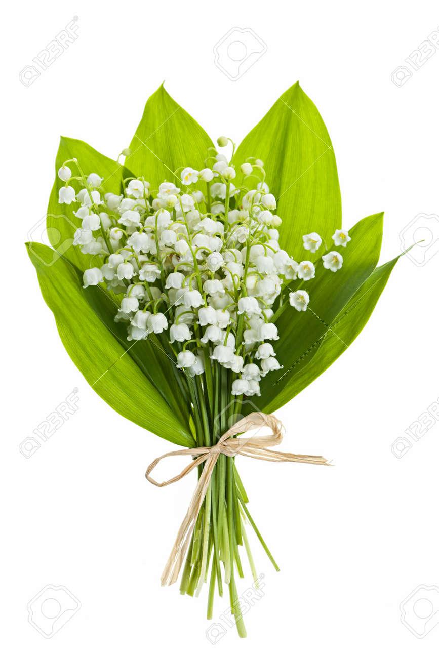 Lily Of The Valley Bloemen Boeket Geãsoleerd Op Witte Achtergrond