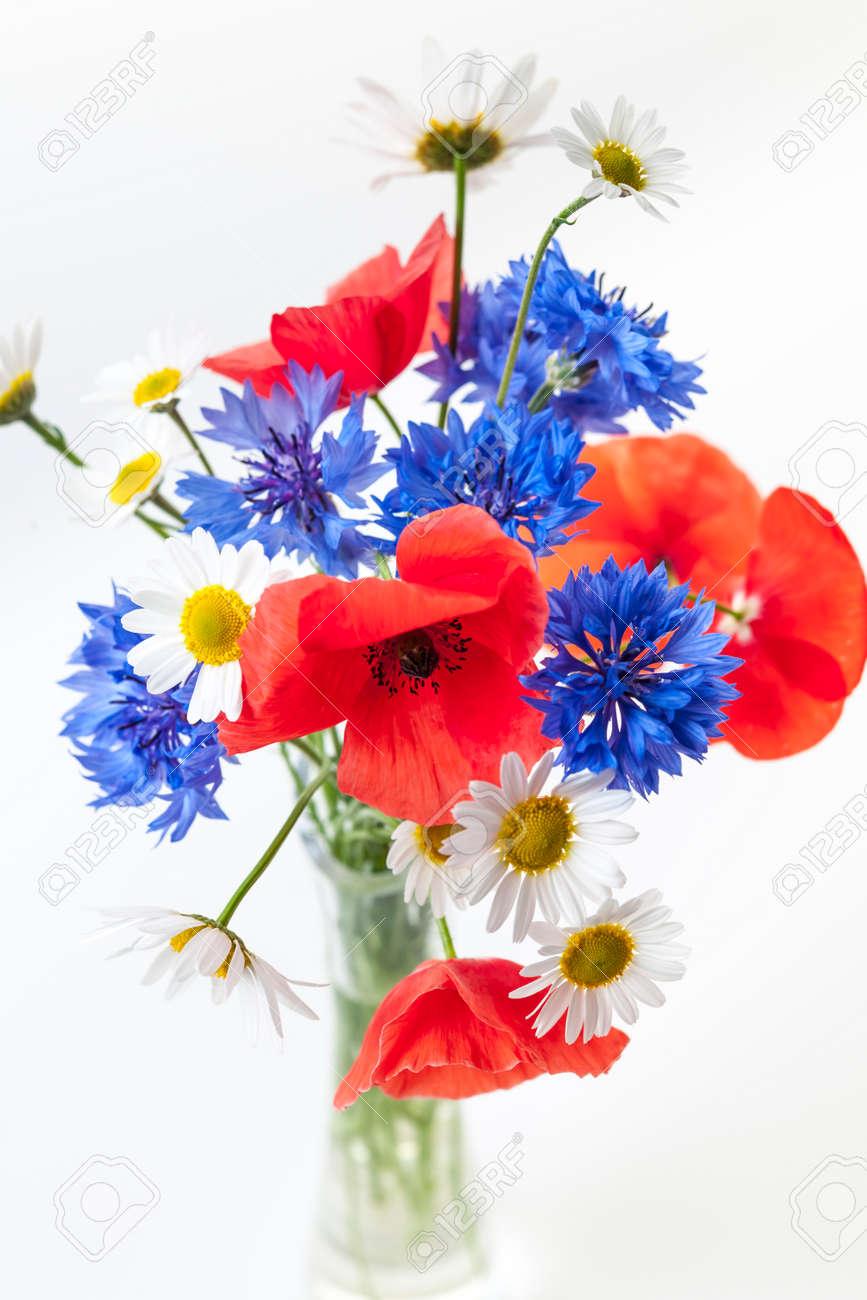 Top Fleurs Des Champs Banque D'Images, Vecteurs Et Illustrations  SA36
