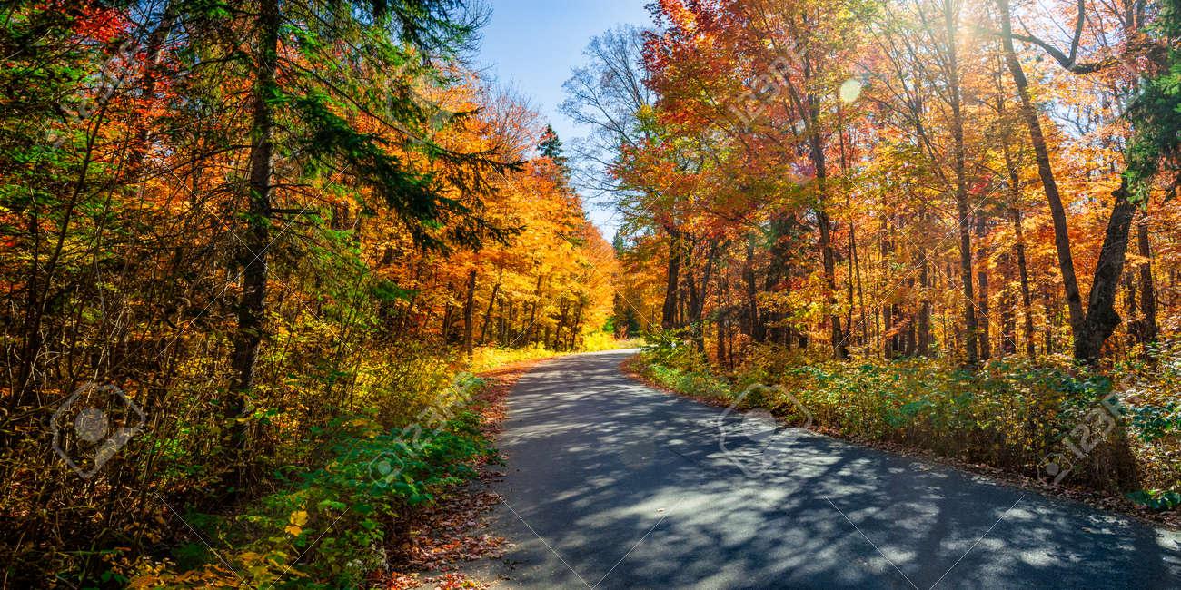 Herbst Strasse Mit Langen Schatten In Bunten Herbst Wald Algonquin