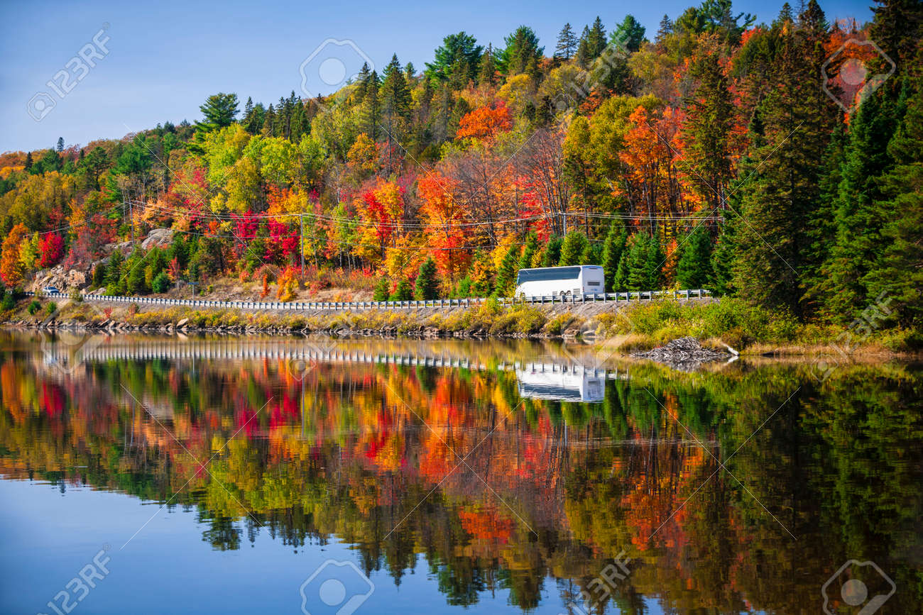 Tour bus driving though fall forest with colorful autumn leaves reflecting in lake. Highway 60 at Lake of Two Rivers, Algonquin Park, Ontario, Canada. - 28917370