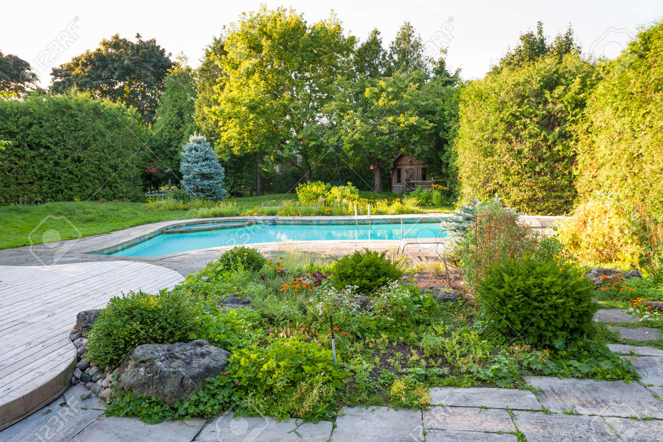 Backyard rock garden with outdoor inground residential private swimming pool and stone patio Stock Photo - 33879224